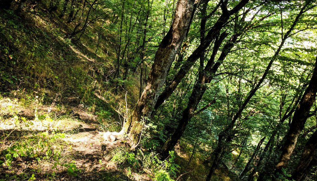 transcaucasian-trail-armenia-syunik-2020-18