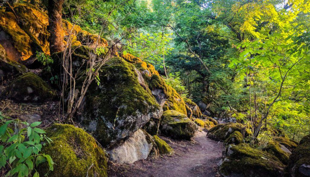 transcaucasian-trail-armenia-syunik-2020-26